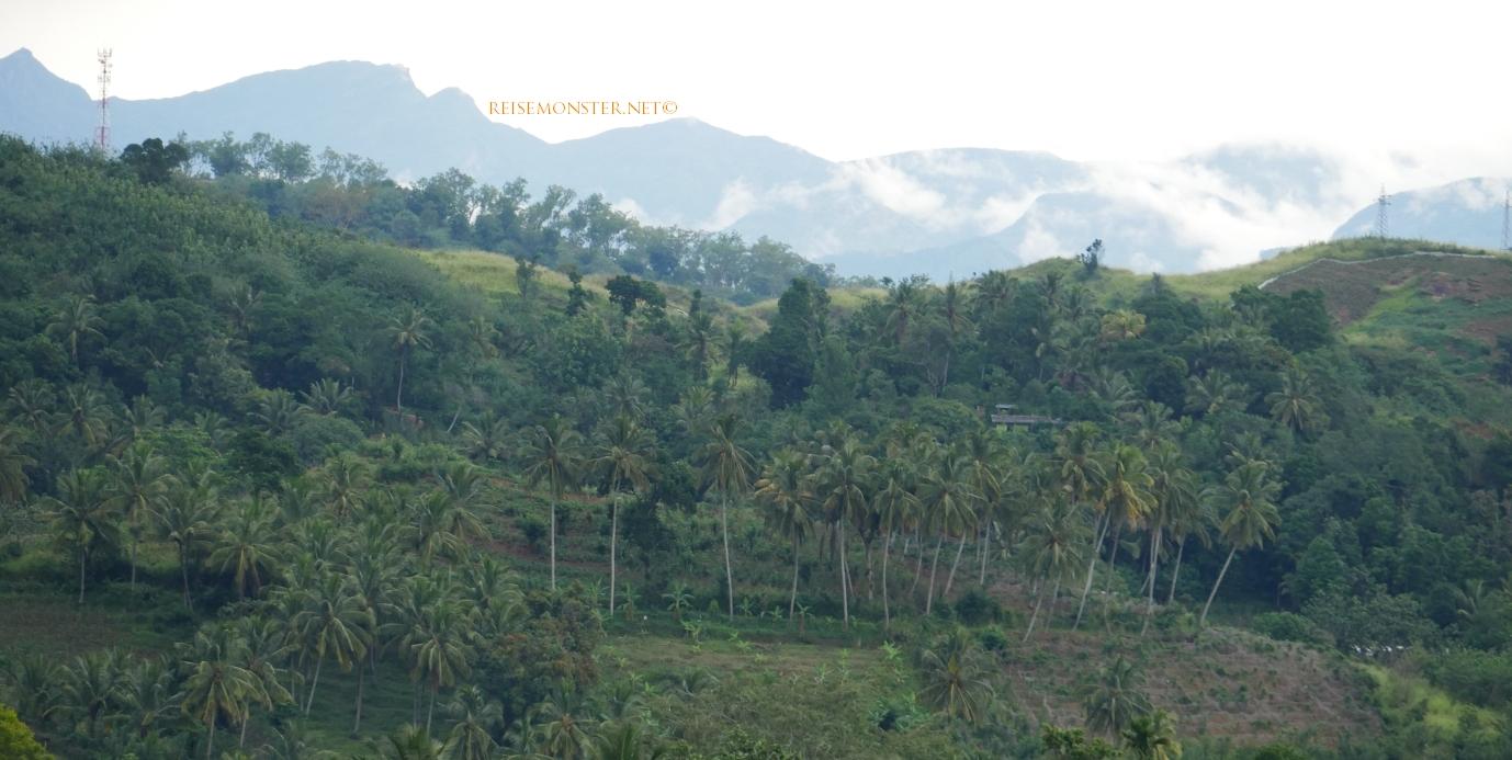 Murapola_Kolambissa_Jan2017_landscape_008